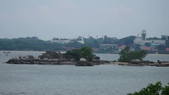 Balik Chek Jawa for Pesta Ubin 2018 (wildsingapore) Tags: chekjawa pulau ubin island singapore marine coastal intertidal shore seashore marinelife nature wildlife underwater wildsingapore people landscape boardwalk pesta guiding