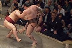 20180518_IMG_8673 (koen@jp) Tags: sports スポーツ sumo 相撲 大相撲 2018 ozumou ryogoku 両国 両国国技館 ryōgoku kokugikan 白鵬 hakuhou モンゴル mng mongolia