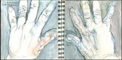 Dedo escogiendo. 23 de mayo. (Sharon Frost) Tags: anatomy skeletons bones phalanges hands fingers sharonfrost journals sketchbooks drawings paintings