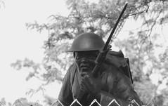 Soldier, Cantigny Park. 4 (EOS) (Mega-Magpie) Tags: canon eos 60d soldier cantigny park 1st division tribute wheaton dupage il illinois usa america bw black white mono monochrome outdoors