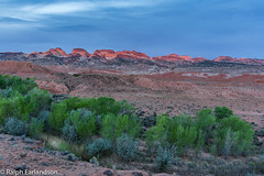 Desert Dawn (Ralph Earlandson) Tags: coloradoplateau utah waterpocketfold sunrise desert pleasantcreek cemeteryhill tree cottonwood capitolreef nikon