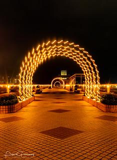 Illuminated Arches Along Kowloon Harbour, Hong Kong