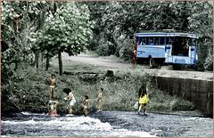 Bain truck (renécarrère) Tags: polynésie tahiti truck rivière polynésien