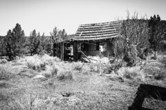 Modoc County, California (paccode) Tags: solemn d850 landscape bushes brush blackwhite quiet california forgotten barn monochrome house tree urban creepy farm home scary abandoned alturas unitedstates us