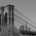 Brooklyn Bridge (NYC USA)