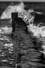 Waves (michael_hamburg69) Tags: germany deutschland beach strand usedom ostseebad mecklenburgvorpommern vorpommerngreifswald insel island seebad zempin bernsteinstrand monochrome wave sea ostsee buhne holzbuhne wooden groyne