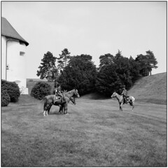 In Formation (Koprek) Tags: rolleiflex28f fomapan 100 varaždin croatia film may 2018