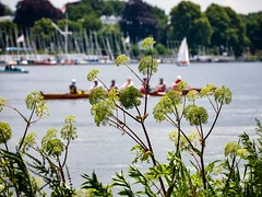 Bootstour (Northside-Images) Tags: hamburg alster leicacl