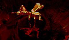 2 souls/Artist : ThedaTammas (Bamboo Barnes - Artist.Com) Tags: thedatammas choreographyofatorturedsoul installation lea surreal emotional darkness figure water light shadow reflection red yellow black digitalart virtualart vivid bamboobarnes
