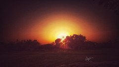 Sunset... (mubin.ayon@ymail.com) Tags: alone sunlight sunset dawn dusk life down lowlife low light