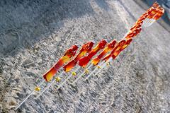 Serpeggiante (meghimeg) Tags: 2018 chiavari spiaggia beach ombrelloni umbrella colori colors fila
