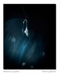 Asca M12 Dg Bd Sg2 Rd1 IMG_4283-4 (thierrybarre) Tags: ascalaphe papillon mood bleu noir dark bokeh macro proxy planète systèmesolaire jupiter ambiance sombre sciencefiction fantasy valérian milleplanètes lune satellite orbite spatial univers cosmos tesla spacex