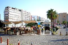 Fayton, Izmir, Turkey (Atila Yumusakkaya) Tags: fayton horse carriage izmir yumusakkaya turkey