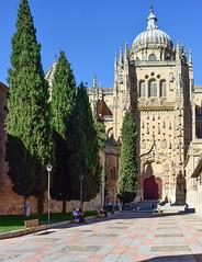 Salamanca (Marian Pollock) Tags: spain church cathedral trees sunny dome gothic paving spires fuji nikon