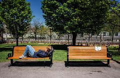 I once had a dream like that (Dan Haug) Tags: wetpaint parkbench ottawa sleeping dream asleep warning spring oblivious xpro2 f16mmf14rwr xf16mm fujifilm