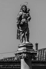 Vergine Maria - Basilica di San Martino - Bologna (frillicca) Tags: 1705 2018 andreaferreri april aprile art arte bn bw basilicadisanmartino biancoenero bianconero blackandwhite blackwhite colonna column madonna monochrome monocromo nikkor nikkor18300mmf35 nikon nikond300 piazza santuariodellamadonnadelcarmine sculpture scultura statua statue verginemaria