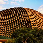 ..golden durian.. thumbnail
