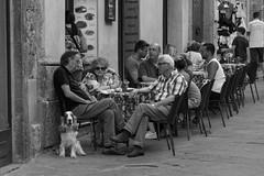 Just going steady (Steve Barowik) Tags: san gimignano italy italia tuscany toscana nikond750 fx fullframe barowik stevebarowik sbofls26 holiday vacanza chianti vacation unlimitedphotos wonderfulworld quantumentanglement lovelycity nikonafs28300f3556gedvr nikkor zoom