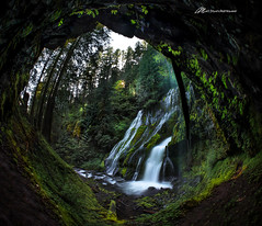 A very different view of Panther Creek Falls (Matt Straite Photography) Tags: waterfalls waterfa water stream river cave rock plants green forest panther gorge columbia columbiarivergorge waterfal waterfall fish fisheye canon danger adventure