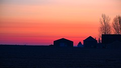 Pre-dawn (bsky-studio) Tags: serenity trees shed barn landscape predawn farm windmils red orange sky winter