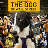 "THE DOG OF WALL STREET • <a style=""font-size:0.8em;"" href=""http://www.flickr.com/photos/23125051@N04/42707441892/"" target=""_blank"">View on Flickr</a>"