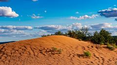 Coral Pink Sand Dunes State Park (campmusa) Tags: sandstone coralpinksanddunes statepark sand navajosandstone pinkcoral dunes utah utahstate kanab