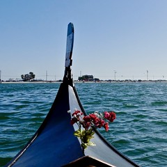 Gorgeous day on the water (rick41241) Tags: flowers gondola