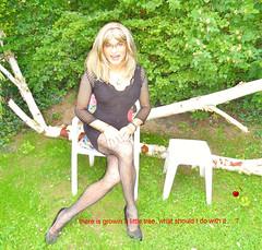 this morning in the garden (Katvarina) Tags: crossdressing crossdress crossdresser tgirl tgurl transgender transgirl trannygirl kat transpeople transition transgendered metrosexuality