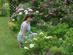 Hillary in the garden wearing a dress she made. (lovesdahlias 1) Tags: sewing portraits gardens nature newengland
