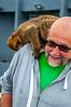 Carry Home Pet (Tony Shertila) Tags: catalanbay gib geo:lat=3613381958 geo:lon=534569755 geotagged gibraltar europe animal barbary ape barbaryape barbarymacaque monkey