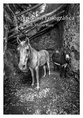 Cartel Exposición Sociedad Fotográfica Málaga (josemariaruizfotografia) Tags: exposicion malaga andalucia cartel