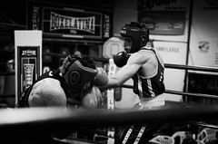28685 - Uppercut (Diego Rosato) Tags: uppercut montante pugno punch boxe boxing pugilato boxelatina nikon d700 2470mm tamron rawtherapee bianconero blackwhite incontro match ring