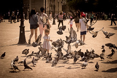 Birds [1] (Kristen Palatella) Tags: paris france parisian bird birds pigeon girl littlegirl young play fun fly flying motion inmotion wings notredame pigeons playing