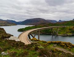 Kylesku Bridge (M.FINDLAY PHOTOS) Tags: scotland bridges kylesku highlands sutherland crossing heather colours gorse water kyleskubridge cloudy scotlandinpicture scottishlandscapephotography
