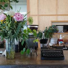#vintage #typewriter #vase #freshflowers #houseplants #breakfastspot #restaurant #portland (Heath & the B.L.T. boys) Tags: instagram oregon portland vase flowers typewriter vintage restaurant plywood