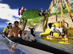 Kayaaaaaaak, Kayaaaaaaak (ScottSilverdale) Tags: secondlife sl kayak scottsilverdale papachico goingtoseainasieve kayaaaaaaak buoy ocean goat goatherd dog cormorant rocks paddle canoe doublekayak galiko jian tlc headhuntersisland balloon ballooningpuppy puppy swimminggoat riot signature signaturegianni catwa catwadaniel argrace aquagoats goatboat