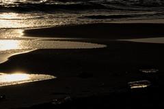 cancelli di ostia, l'acqua e la luce (solo a roma) Tags: italia lazio roma canon 350d riflesso mare ostia castelporziano plastica bottiglia tramonto sabbia bagnasciuga controluce