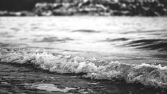 Black and White - Beach (Nik2o) Tags: roses catalunya espagne es beach plage playa nikon d7500 blackwhite black white noirblanc noir blanc water wave vague sea mer mar agua eau ecume foam sigma 50mm art focus nik2o