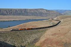 Trinidad, Washington (UW1983) Tags: trains railroads bnsf columbiariversub coaltrains columbiariver trinidad washington sd70mac