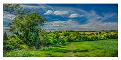 England in May, Eynsford, Kent. (Richard Murrin Art) Tags: englandinmay eynsford kent richard murrin art