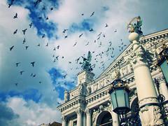 (both names in passport) Tags: lviv 2007 opera theatre sky column sculpture statue birds pigeon roof street light ukraine