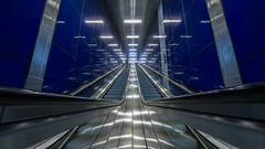 underground blues (Blende1.8) Tags: escalator escalators rolltreppe düsseldorf wideangle symmetry symmetrie perspective architecture underground untergrund ubahn metro blue blau metall metallisch urban city sony alpha ilce7rm2 sel1224g 1224mm a7rii a7rm2 lines line