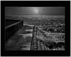 Walkway waves. (agphoto100) Tags: wet sea water waves splash rock sun moon birds flare canon a710is frame morten bay sky bw mono sparkle shimmer