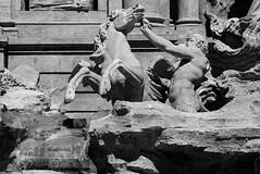 Fontana di Trevi (detail) (Lars Ørstavik) Tags: fontanaditrevi rome italy horse man horseherd