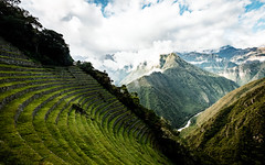 The Incan terraces of Winay Wayna (Piyush Bedi) Tags: cuzco peru pe mountains clouds andes inca trail hike trek outdoors nature triangles v river terrace terraces ruins southamerica americas ancient hidden adventure travel alpaca expeditions