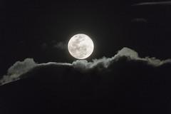 Salida de la luna (José M. Arboleda) Tags: salidadelaluna paisaje nube luna noche anochecer cielo popayán cauca colombia canon eos 5d markiv tamron josémarboledac sp150600mmf563divcusda011