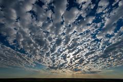 1805_3184 Altocumulus Morning Sky (wild prairie man) Tags: landscape sky altocumulus clouds crepuscularrays godrays morning dramatic wild prairie grasslandsnationalpark saskatchewan canada copyrighted jamesrpage explored