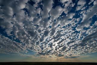 1805_3184 Altocumulus Morning Sky