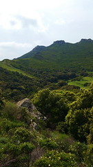 308 - Cap Corse, Rogliano, les ruines du château Castellacciu San Columbanu (paspog) Tags: rogliano captcorse corse france mai may montagne moutain berg 2018 château schloss ruines ruinen ruins châteaucastellacciusancolumbanu