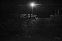 creepy alley (ale_brando) Tags: creepy alley night niksoftware nightphotography nikonfx fx gate street yard light darkeness silverefexpro